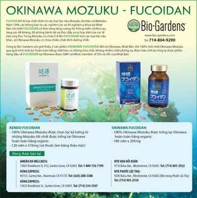 203160-OKINAWA-MOZUKU-FUCOIDA-4