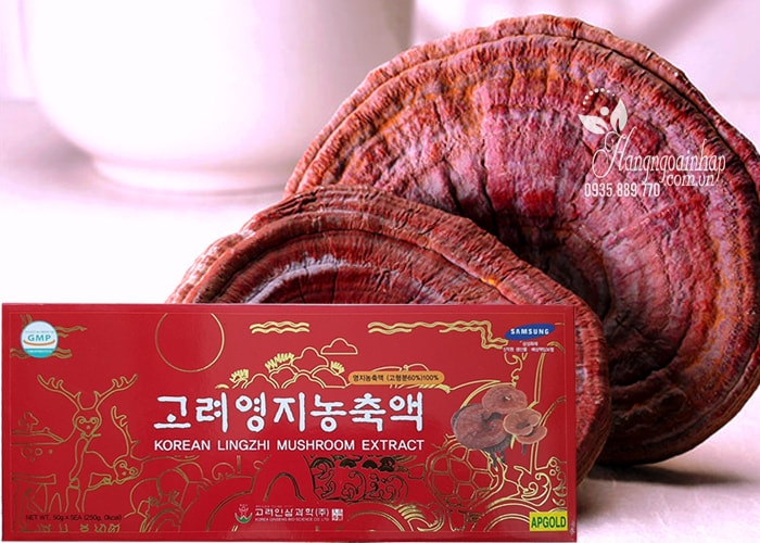 https://vinapharm.net/gia-korean-lingzhi-mushroom-extract-gold-linh-chi-thuong-hang/