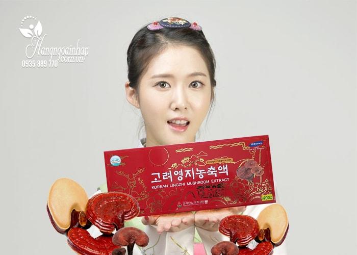Giá korean lingzhi mushroom extract gold – Linh chi đỏ thượng hạng