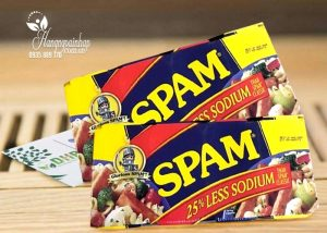Thit-hop-Glorious-Spam-25-Less-Sodium-340g-cua-My