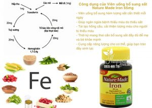 vien-uong-bo-sung-sat-nature-made-iron-65mg-180-vien-cua-my-2