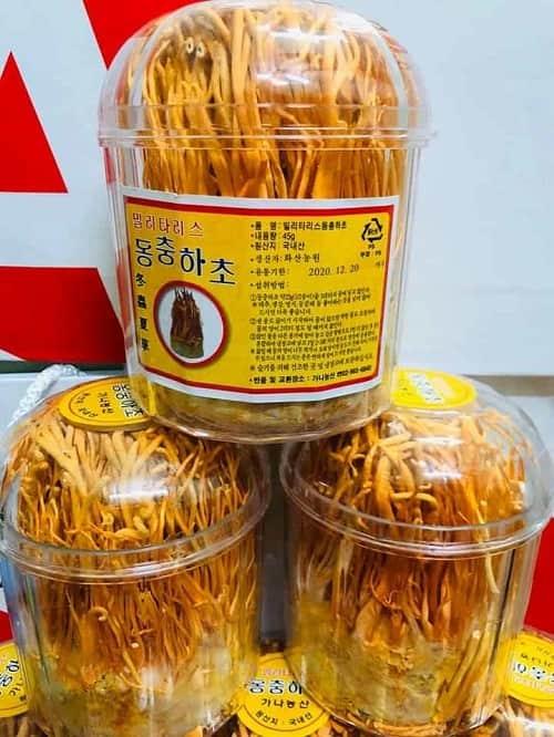 Đông trùng hạ thảo khô Hàn Quốc hộp 45g giá bao nhiêu-3